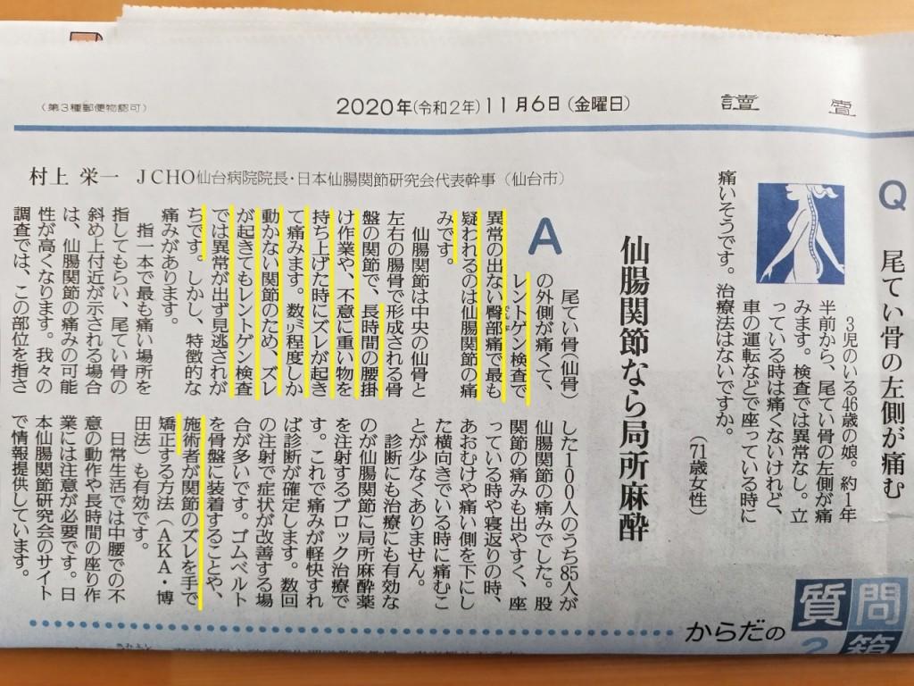 仙腸関節(読売新聞圧縮)